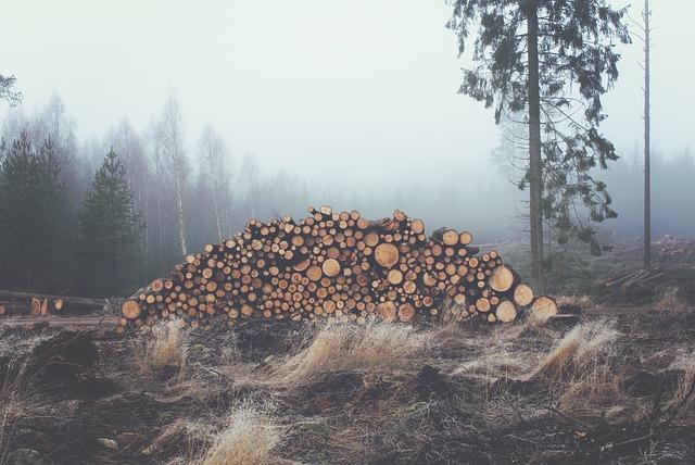 buy lumber online